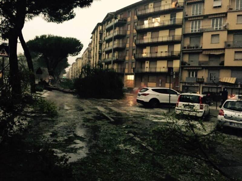 Dramma maltempo, treni rimandati a Roma. Alberi crollati e strade ...