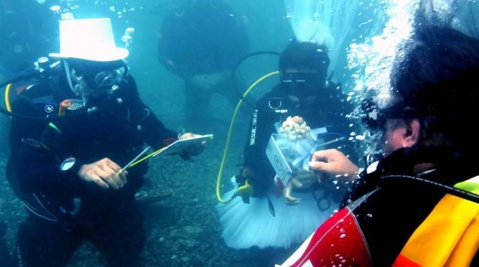 image Sposi subacquei tra i fondali di Framura