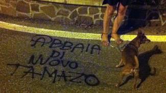 Polpette al veleno: uccisi due cani. Choc a Pian di San Bartolo