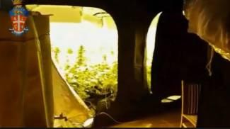 Tiene ancora banco la coltivazione di marijuana in un garage del Giotto. Ecco il video che fa scalpore